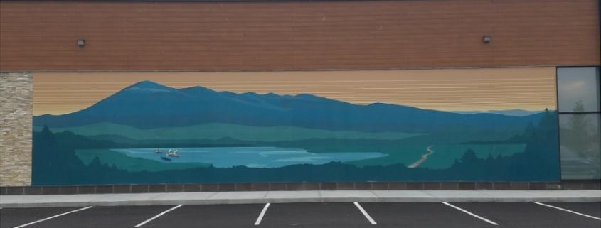 Vinyl wall mural installed on DensGlass 13' x 65'
